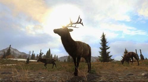 Download PC Games Cabelas Big Game Hunter Pro Hunts