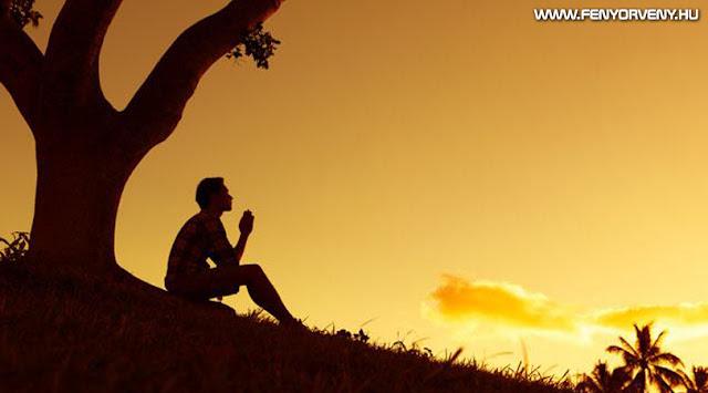 Így változik meg a véred az ima hatására