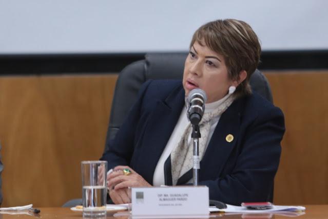 Muy grave la complicidad y la resistencia de Morena y del presidente de romper con las complicidades del pacto del patriarcado: Almaguer Pardo