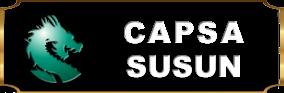 CopaQQ-Capsa Susun