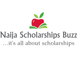 Naija Scholarships Buzz