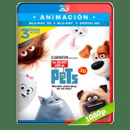 La vida secreta de tus mascotas (2016) 3D Half OU 1080p Audio Dual Latino-Ingles