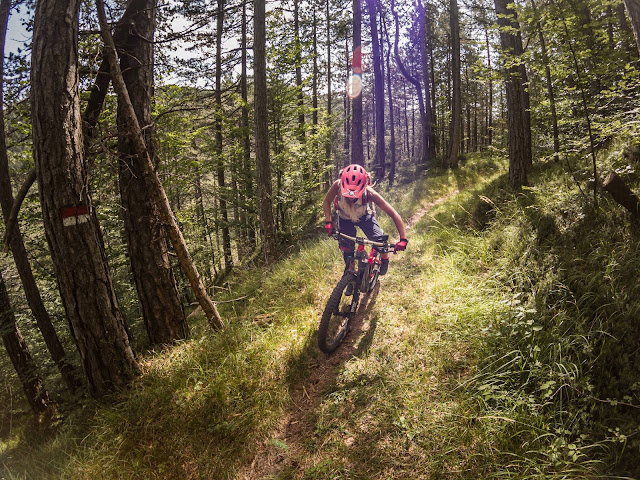 Mountainbike Tour: Monte Staulizze und Stavoli Sagata/ Friaul