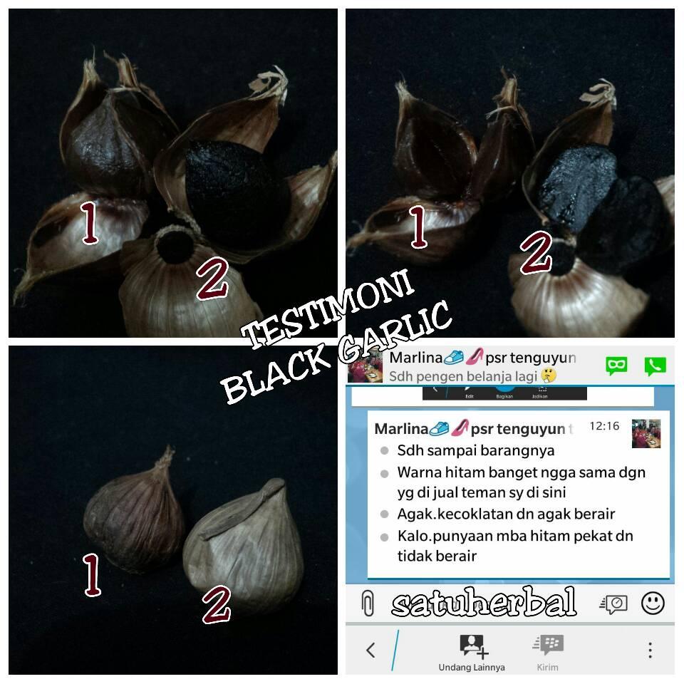 Kumpulan Testimoni Black Garlic Bawang Hitam Satuherbal Tunggal 500 Gr