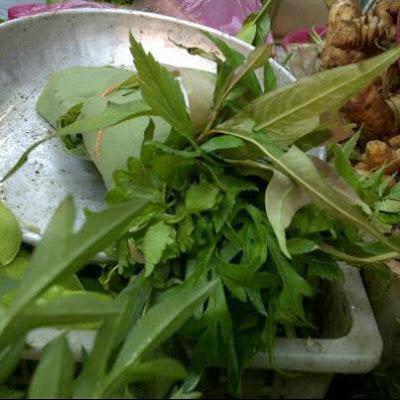 Resepi - Nasi Ulam Utara (Resepi Mak)