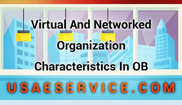 Virtual And Networked Organization Organizational Behavior