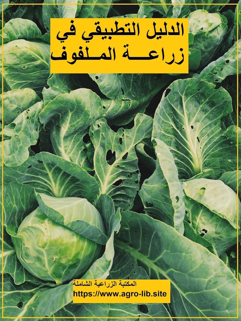 كتاب : الدليل التطبيقي في زراعة الملفوف