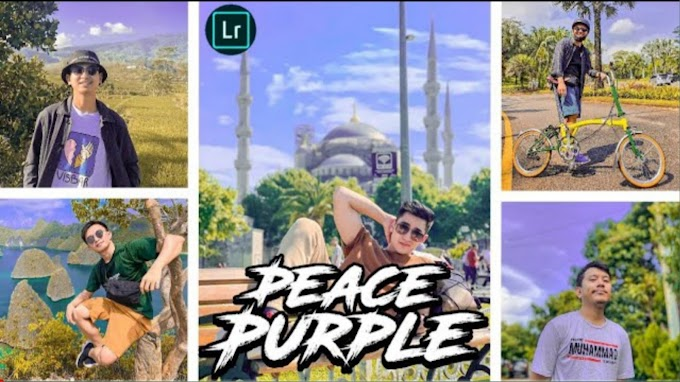Rumus Preset Lightroom|Peace Purple