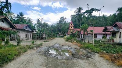 "Jalan Provinsi Kabupaten Nias Barat, Dari Fabaliwa Menuju Lolowau Nias Selatan ""Memprihatinkan"""