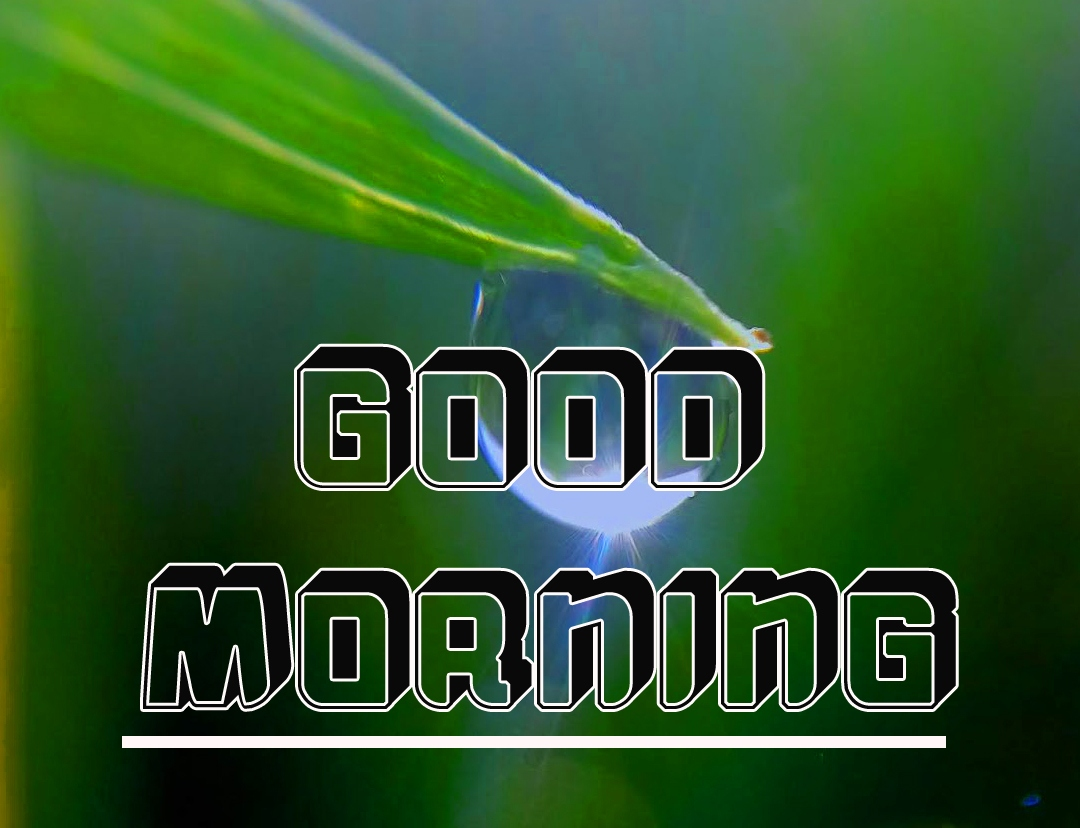 good morning scenery messages