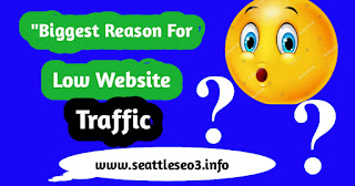 """""""Biggest Reason for Low Website Traffic"""""""