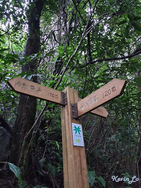 拉波波村營區步道四周樹林茂密