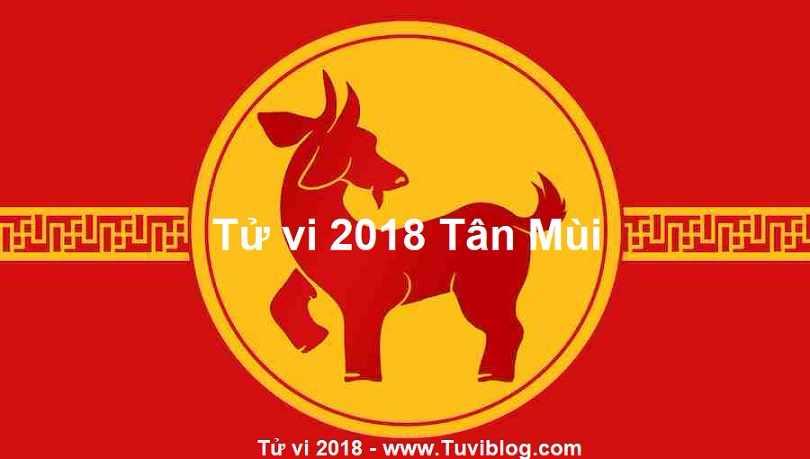 Tu vi Tan Mui 1991 nu mang nam 2018