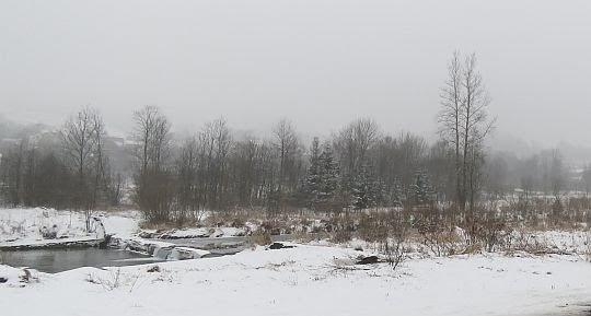 Rzeka Łososina w Dobrej.