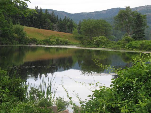 Beautiful lake side facing mountains