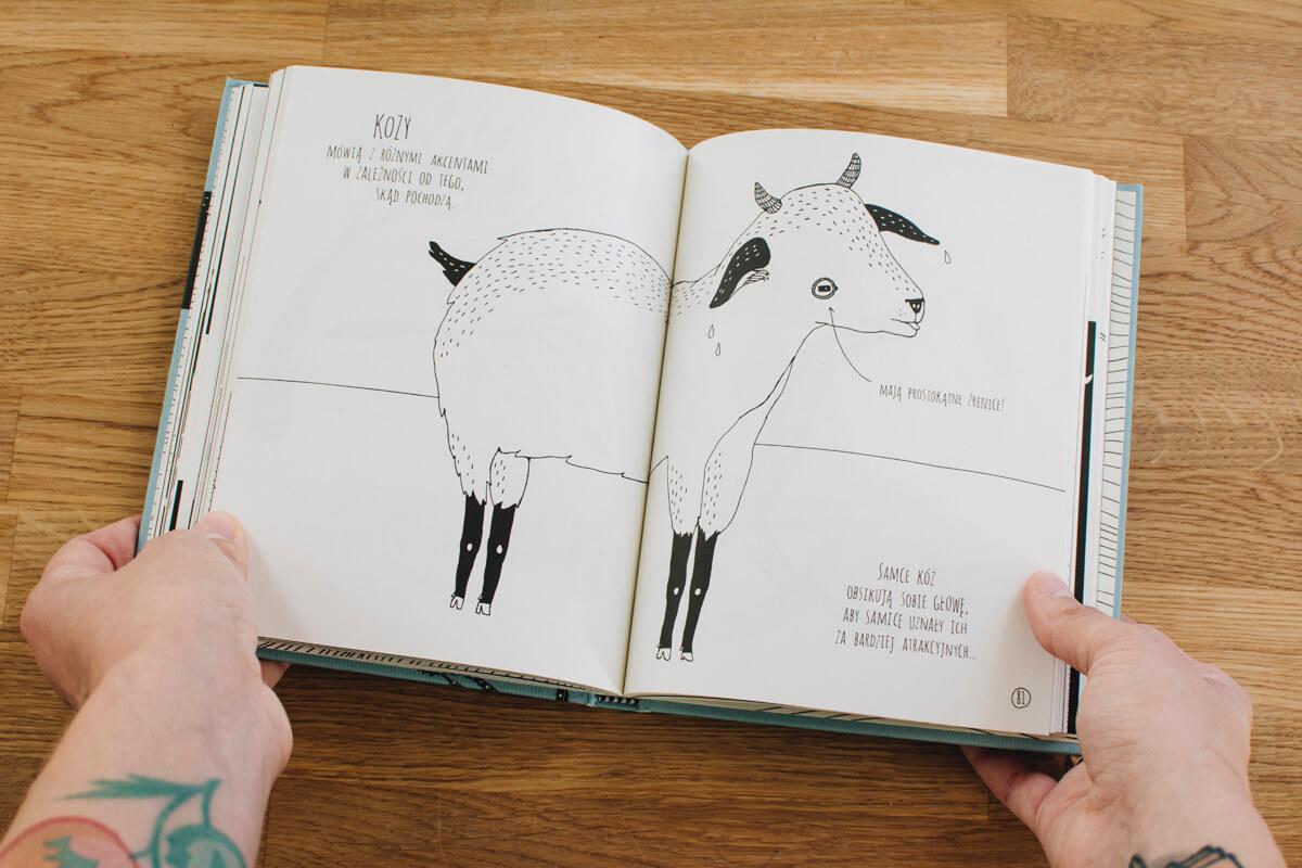 Książka na prezent dla przedszkolaka