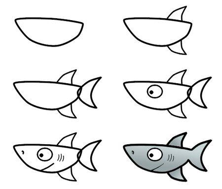 Learn to draw a shark for kids