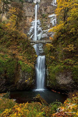 Multnomah Falls amidst fall colors in the Columbia River Gorge National Scenic Area, Oregon, USA.