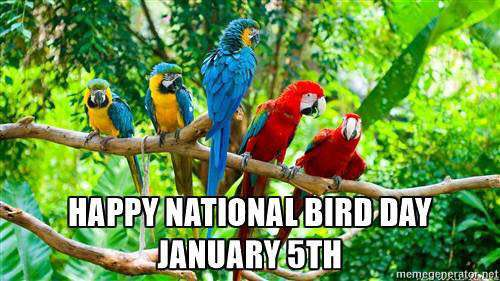 National Bird Day Wishes For Facebook