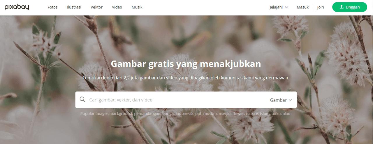 Pixabay Situs download gambar vector gratis