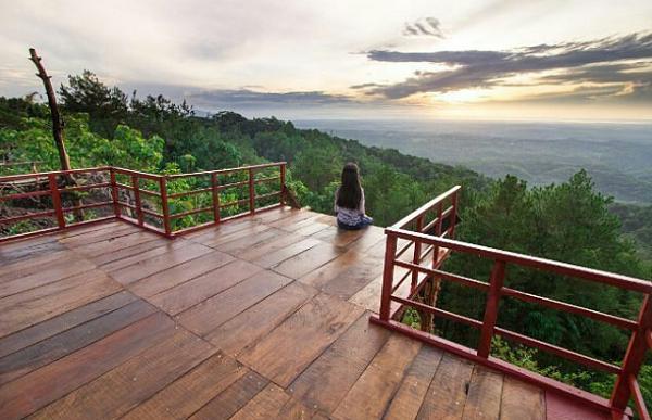 wisata populer di Jogja Gardu Pandang Pinus Asri