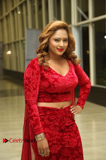 Nikesha Patel Pictures in Red Dress at Araku Road Lo Audio Launch ~ Celebs Next
