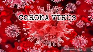 Akhirnya, Tim Tanggap Pencegahan Virus Corona Dibentuk