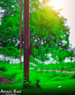 Nature Cool CB Background Blur Stock Photo