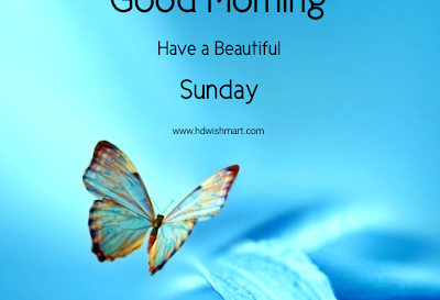35 Best Happy Sunday Wishes: Images, Greetings, Photos, and Quotes