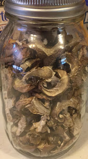 Dehydrating mushrooms, making mushroom powder, how to use mushroom powder, how to us dehydrated mushrooms,