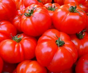 5 Bahan Makanan yang Telah Terbukti Secara Ilmiah dapat Mencegah Kanker
