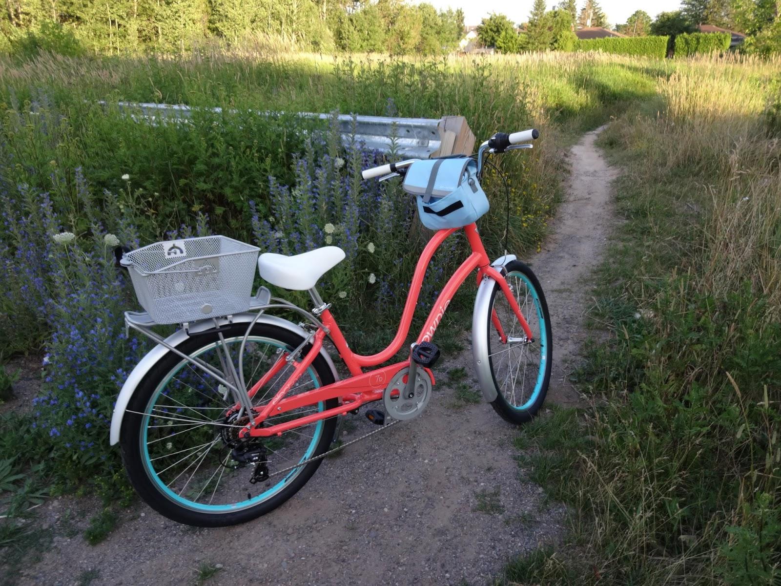 Crafty Kat My Beautiful New Townie Electra Bike