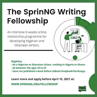 The SprinNG Writing Fellowship (SWF)