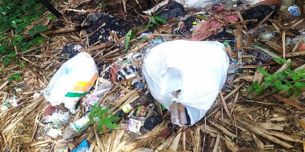 Membuang Sampah Pada Tempatnya