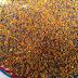 طريقة جمع حبوب اللقاح التي يجلبها النحل pollen harvest