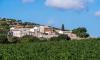 Logo Vivi la Wine Experience e vinci gratis un soggiorno di 1 settimana a Favignana