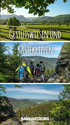 Wanderung Gestütswiesen und Kästeklippen  Wandern Bad Harzburg  Wandern-im-Harz  Wanderung-Niedersachsen 20