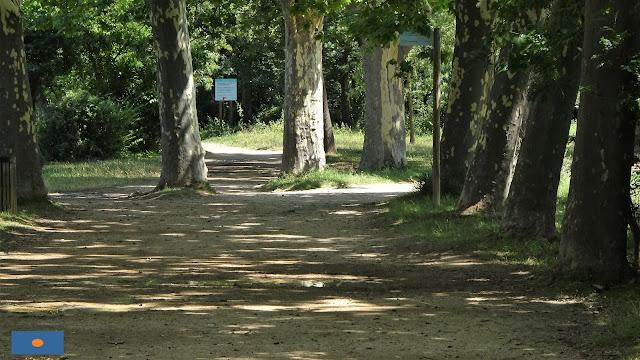 Camí que voreja l'estany de Banyoles