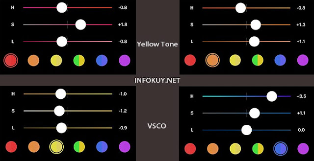 Settingan Rumus Yellow Tone VSCO #2