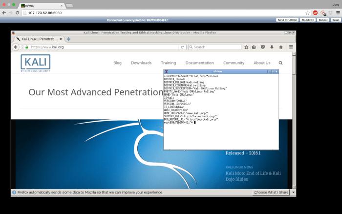 Hướng dẫn cài đặt hệ điều hành kali linux trên trình duyệt web