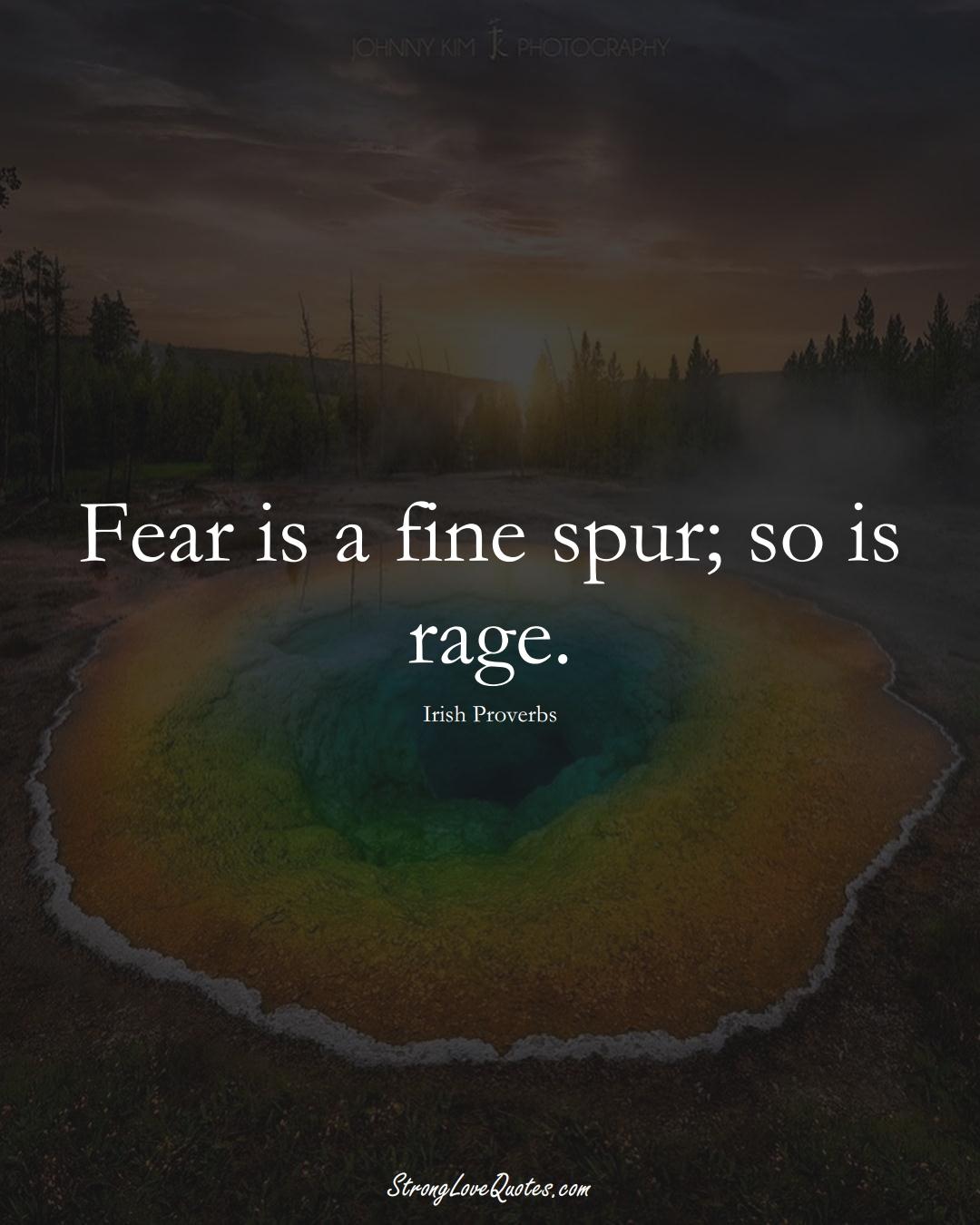 Fear is a fine spur; so is rage. (Irish Sayings);  #EuropeanSayings
