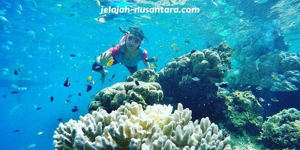 aktivitas wisata snorkeling pulau tidung