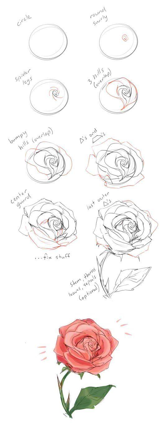 Рисунки карандашом для начинающих: цветы