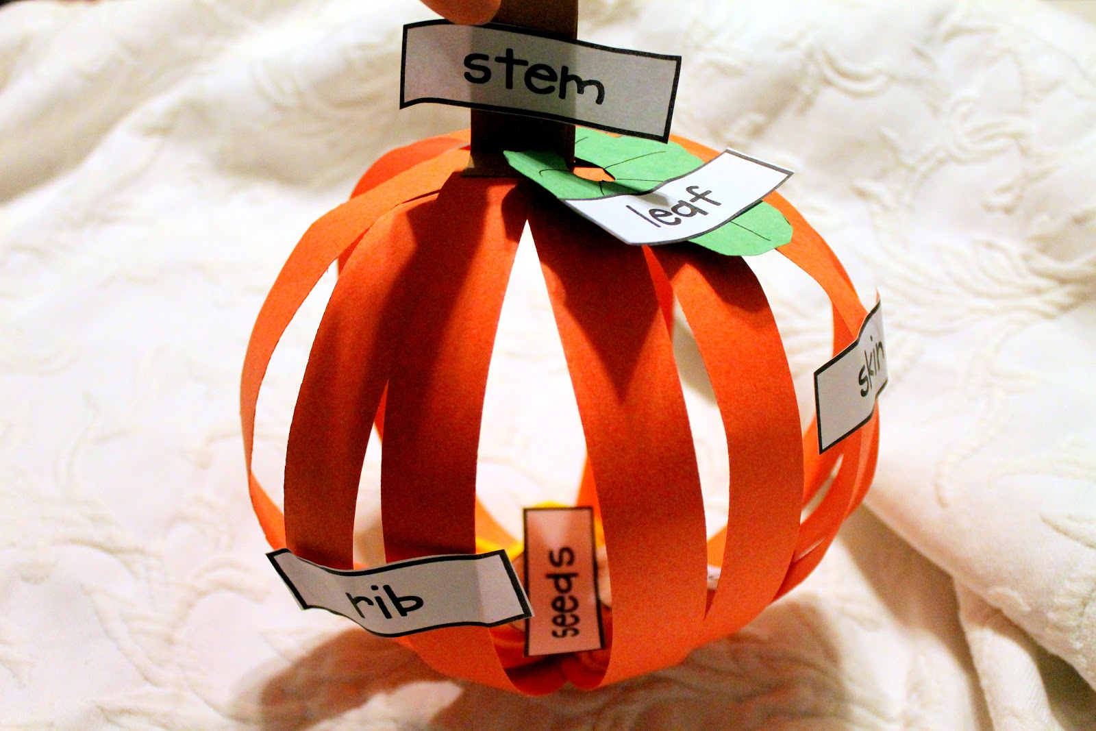 Lil Country Librarian Pumpkin 3d Labeling Investigations And A Freebie