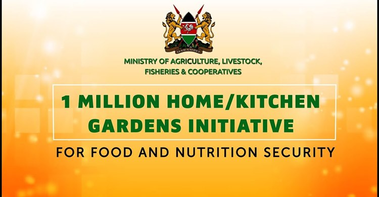 Kenya launched a 1 million kitchen gardens faming initiative
