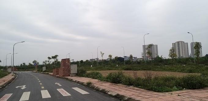 Tổng hợp ĐẤT Đấu Giá, Tổ 11, Phường Cự Khối, Quận Long Biên, Hà Nội