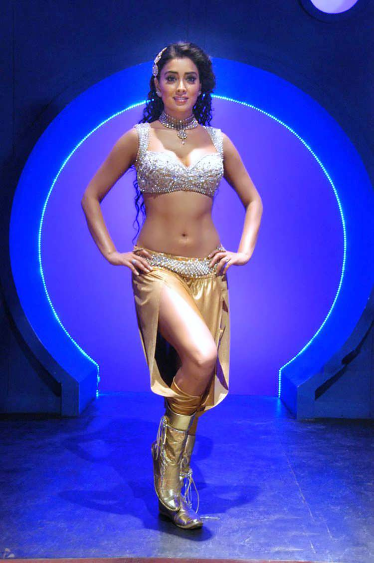 Shriya Hot Navel Exclusive Pics Without Water Mark Gallery -2972