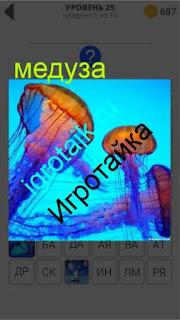 в воде плавает разноцветная медуза 25 уровень 400 плюс слов 2