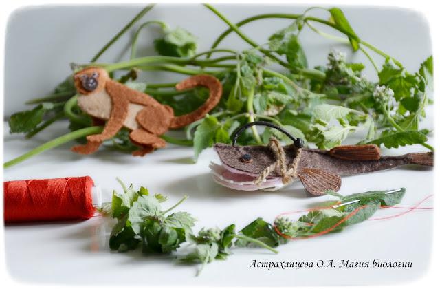 КОАПП_почему кусают насекомые_магия биологии, мартышка, удильщик, гирлянда