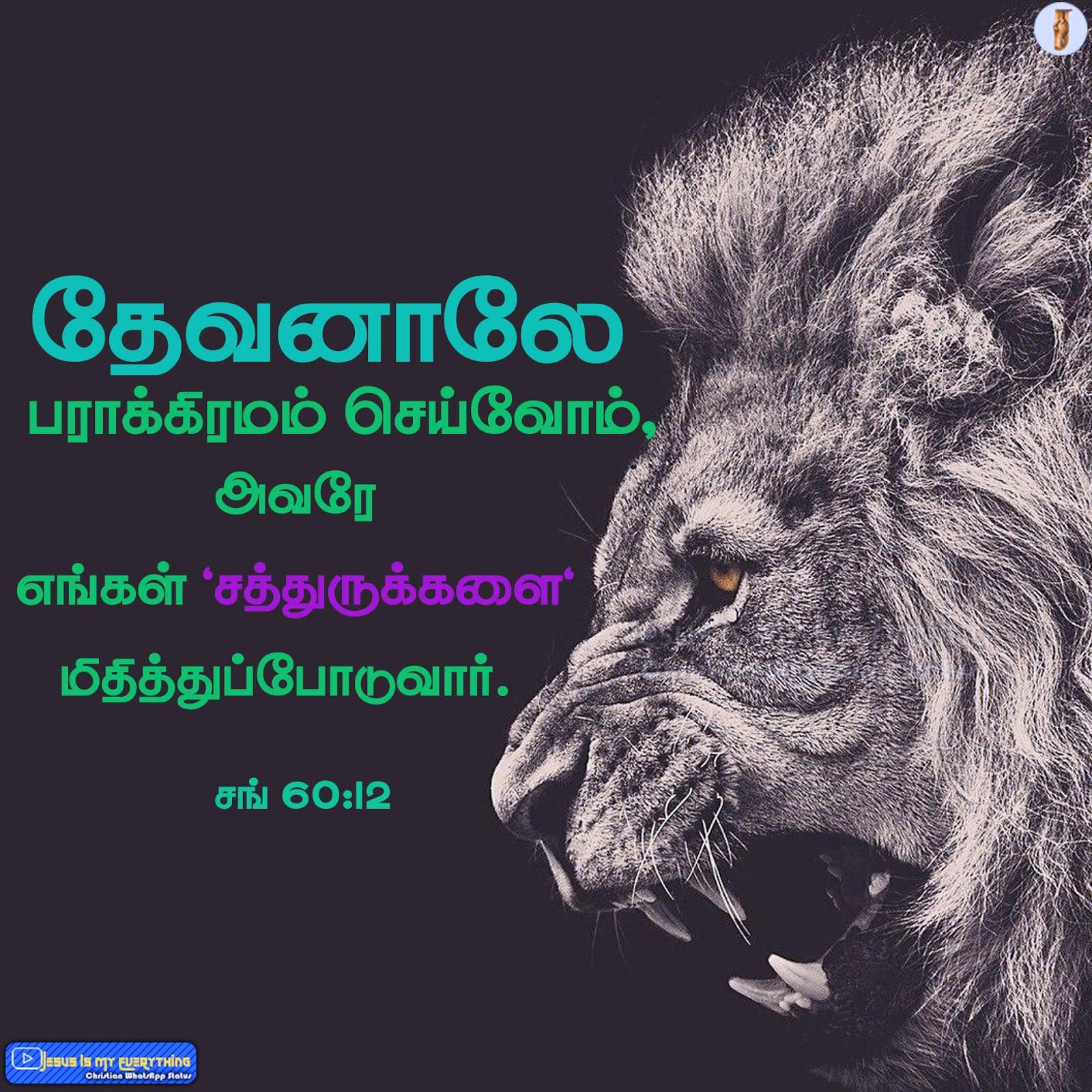 த வன ல பர க க ரமம ச ய வ ம Through God We Shall Do Valiantly Tamil Bible Words Tamil Bible Wallpapers